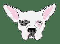 dog-icon